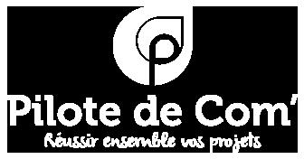 Logo Pilote de com